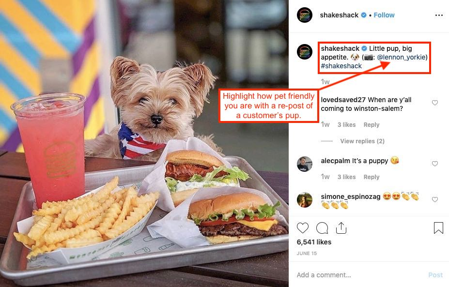 Instagram post of a puppy at Shake Shack